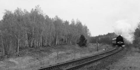 Parowozem przez Wielkopolskę 2013